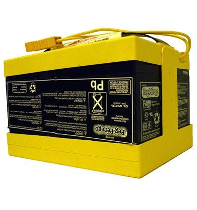 Batterie 24V (12Ah) Peg-Pérego