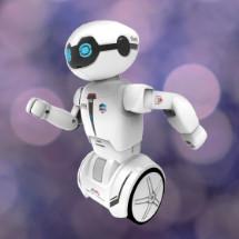 RC Roboter
